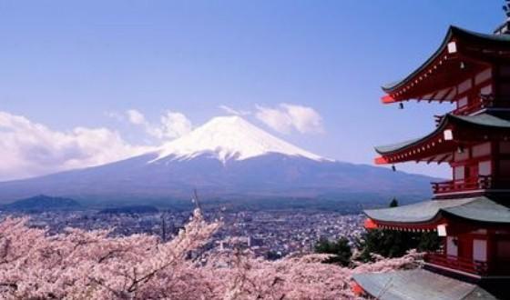 【春秋航空(名东)】日本东京富士山品质5日游