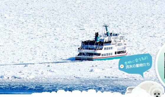 【2019日本新春特刊】—北海道•道东•破冰船体验+东京半自由行6日游