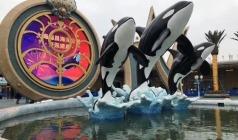 【从陆地到海洋的跨越】上海海昌海洋世界、野生动物园休闲二日游