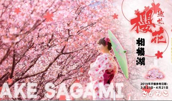 【2019日本盛樱庆典】日本本州和歌山BBQ海鲜双温泉6日游