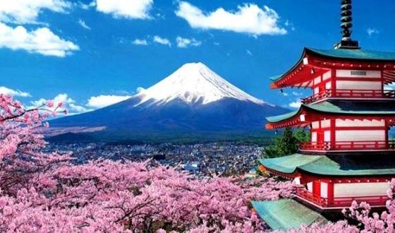 【恋上东京】东京富士山温泉物语6日游纯玩