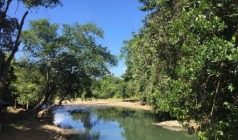 风下之乡-沙巴漫步红树林4晚5日游