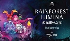 【幻光雨林奇妙夜】国庆新加坡品质纯玩6日游