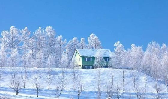 【春节宁波全新路线】日本北海道+大阪关西滑雪和风品质8日游