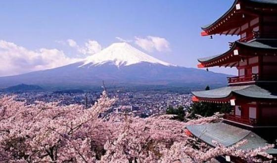 【东航-宁波出发】日本本州心品质温泉半自助6日