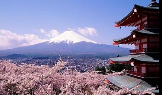 【东航】日本味蕾古都<大阪半天FREE+黑门市场>温泉6日
