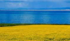 【专列·西北五省】—宁夏、内蒙、青海、新疆、甘肃旅游专列12日游