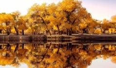 【禾木秋色】新疆吐鲁番、天山天池、胡杨林、禾木、喀纳斯湖八日游